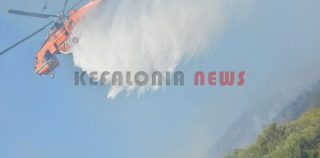 Τρίωρη μάχη με τις φλόγες έδωσαν οι  Πυροσβέστες