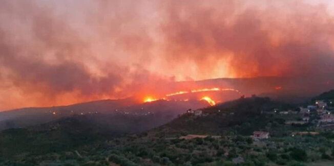Υπό πλήρη έλεγχο η φωτιά – 10.000 στρέμματα δάσους και ελαιώνα έγιναν στάχτη